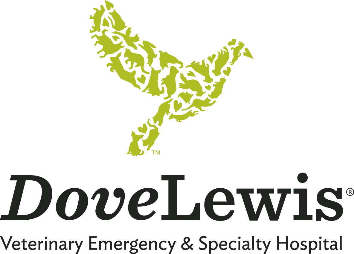 Matrix Networks supports local charities like the DoveLewis Foundation